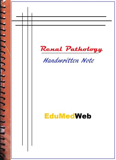 renal-pathology