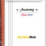 anatomy-short-note-pdf